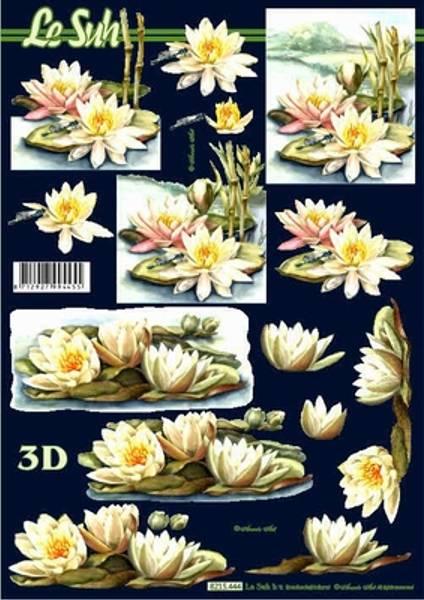 3D ark - Vannliljer